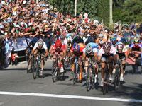 Sprint final de la 5ª etapa: J. Haedo, Maxi Richeze y Gil Cordovés